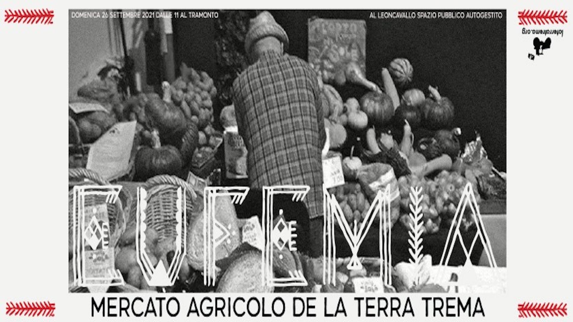 EUFEMIA - MERCATO AGRICOLO DE LA TERRA TREMA